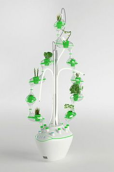 Hydroponic plant cultivator for growing organic food in future households Designed for the kitchens of 2025 households, planTree allows to grow organic food from seed to plants. Hydroponic Vegetables, Hydroponic Growing, Hydroponic Gardening, Growing Plants, Container Gardening, Indoor Gardening, Indoor Farming, Indoor Aquaponics, Invasive Plants