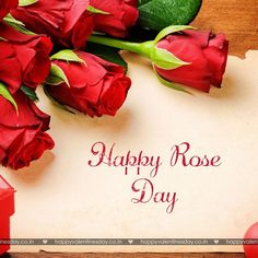 Rose Day - happy valentines day ideas - http://www.happyvalentinesday.co.in/rose-day-happy-valentines-day-ideas/  #FreeValentineCards, #FreeValentines, #HappyValentinesDayFriends, #QuotesForValentinesDayCards, #SendCardsOnline, #ValentineDaySpecialImagesDownload, #ValentinesDayHeartImages, #ValentinesDayLoveCards, #ValentinesDayShortQuotes, #Wallpaper, #WwwValentinesDayPictures