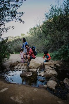 How a family hike turned into a mini-science lesson.  #FamilyTrails