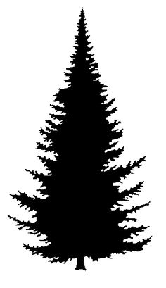 best pine tree clipart 24529. Black Bedroom Furniture Sets. Home Design Ideas