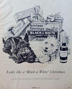 Morgan Dennis  B W Illustration  print art   black and white scotty dogs  scotch whiskey  Art