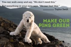 Using #cleanenergy for data centers that store ours pins can help protect places like the Arctic from the effects of global warming. Take action now & ask Pinterest to go green!  https://secure3.convio.net/gpeace/site/Advocacy?cmd=display&page=UserAction&id=1608 #clickclean