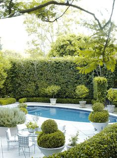 Clipped hedges, privacy wall, pool - Barbara Barry's garden inspiration