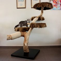 kratzbaum aus naturholz asten kratzbaum mittelgro deine life with pets. Black Bedroom Furniture Sets. Home Design Ideas