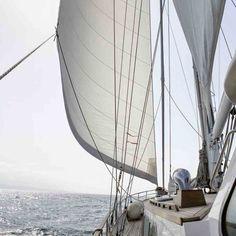 PEGASUS BLUE -  Explore Sea & Sailing