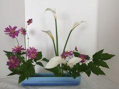 Narabu/ Calla lily, Japanese Anemones