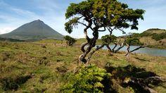 Azoren Reisen - Wandern und Erholen im Triangulo Mount Rainier, Portugal, Mountains, Nature, Travel, Europe, Islands, Recovery, Spain