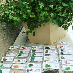 """"""". My lovely seeds  . مجموعتي من أجود أنواع بذور الخضروات  إلي أستخدمها في حديقة البيت  . أجعلوها دائماً عندكم في كل بيت أنتاجكم للخضار في حديقة البيت…"""""""