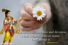 #offering