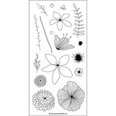 CONCORD & Wildflower Clear Photopolymer Stamp Set) This package contains Wildflower: a 17 piece set designed to use with watercolors or markers that includes Large 5 petal flower measures approximately 2 x 2 Small 8 petal flowers measures approximately Tampons Transparents, Floral Doodle, Pattern Coloring Pages, Concord And 9th, Youre My Person, Paper Craft Supplies, Paper Crafts, A 17, Flower Cards