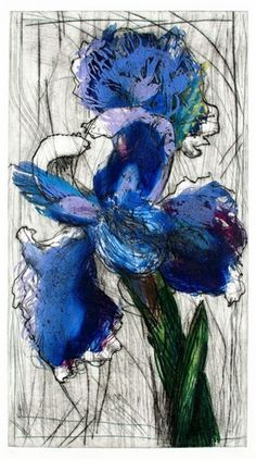 View Dutch Iris By William Kentridge; etching and aquatint with three copper plates; image size: 108 x 59 cm; Access more artwork lots and estimated & realized auction prices on MutualArt. William Kentridge Art, Art Sketches, Art Drawings, Dutch Iris, South African Art, Drawing Course, Copper Art, Artist Sketchbook, Sun Art