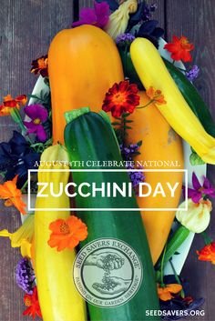 August 8th celebrate National Zucchini Day by sharing some summer squash | Don't forget to support our mission to preserve heirloom varieties of seeds for future generations by becoming a member of Seed Savers Exchange! seedsavers.org