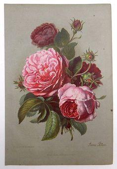 1867 FLOWERS Flower Bouquet ROSES Blumen Germany Early