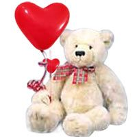 One Cute Soft Teddy ( 1 Ft) with 2 Balloon. (Design May Vary)