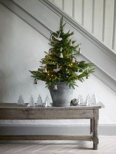 Prachtige sfeer voor brocante kerst. Mooie oude brocante banken, salontafels en zinken emmers & teilen