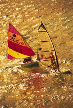 Breezes Bahamas - Nassau - All Inclusive Resort | Sign up for free windsurfing lessons, or try kayaking, sailing, tennis and basketball | View All Activities!