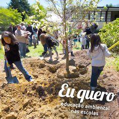 Meio Ambiente - Educação Ambiental - Comunidade - Google+
