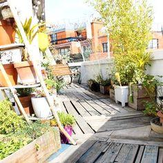 Une terrasse en longueur à Paris