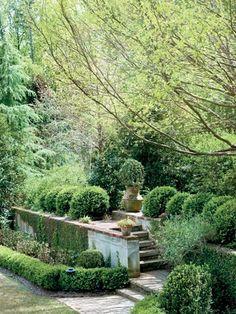 Flannery O'Connor's garden