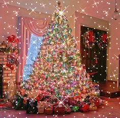 Can Anyone Start A Christmas Light Installation Business Christmas Tree Gif, Merry Christmas Animation, Christmas Scenery, Diy Christmas Lights, Christmas Love, Christmas Pictures, Beautiful Christmas, Christmas Tree Decorations, Vintage Christmas