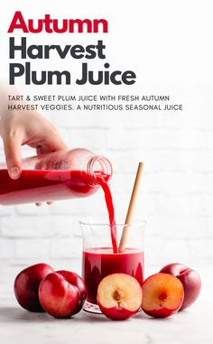 A seasonal plum juice recipe with fresh autumn veggies. Plum juice is a delicious and refreshing drink with tons of nutritional benefits and is great for constipation! Juice Cleanse Recipes, Detox Smoothie Recipes, Weight Loss Smoothie Recipes, Vegan Recipes Easy, Juicer Recipes, Smoothie Cleanse, Detox Recipes, Detox Drinks, Recipes