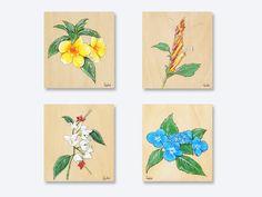 Botanical beautiful flowers