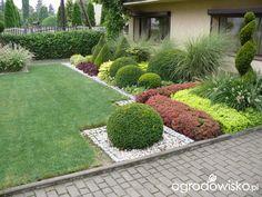 Large Backyard Landscaping, Landscaping Plants, Landscaping Design, Front Garden Ideas Driveway, Small Garden Landscape, Garden Planters, Lawn And Garden, Garden Inspiration, Beautiful Gardens