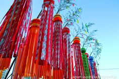 tanabata eventos