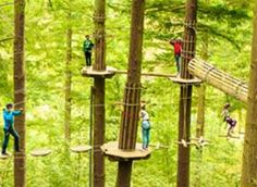 Rockville, MD - Go Ape. Located in Rock Creek Regional Park, Go Ape offers… The Places Youll Go, Places To See, Thetford Forest, Go Ape, Weird Fish, Ropes Course, North Myrtle Beach, Rock Creek, Circuit