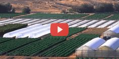 See how Israel is changing every desert in the world.
