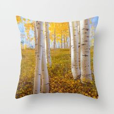 Tree Throw Pillow,  Aspen Home Decor Pillow, Yellow Blue Nature Art, Modern Soft Furnishing, Utah Photo Throw, Cushion Living Room Bedroom by SusanTaylorPhoto on Etsy