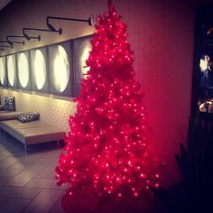We're getting in the holiday spirit here at #MoonriseHotel! #regram from @eyecandyphotog