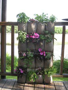 vertical gardening ideas   Offshoots