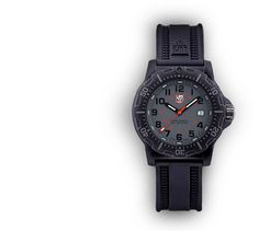 Luminox Black Ops Carbon 8800 series.  Model A.8802.  More affordable than the Nite watch.  Still bad ass.  $400