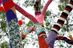 knitted tree    Installation by grrl+dog for Wollongong Council.