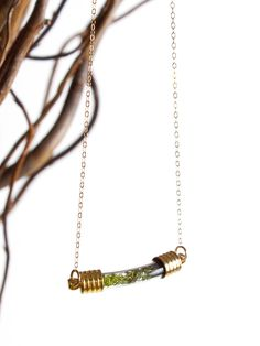 Terrarium Curve Necklace