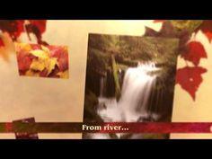 ▶ Flutter Official Book Trailer - YouTube