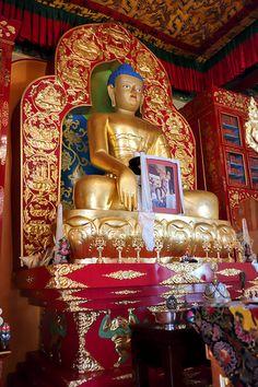 THE KARMA KAGYU LINEAGE OF TIBETAN BUDDHISM traces its origins to Shakyamuni Buddha through Marpa the Great Translator, who three times traveled to India to bring back authentic Buddhist teachings to Tibet.
