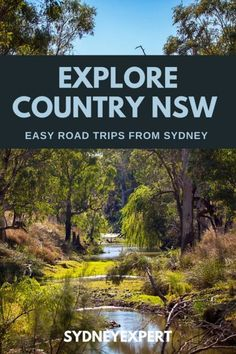 Planning a road trip? Not sure where to go? Our road trip ideas will help you discover some of the best towns in NSW. From opals to an open range zoo, there's much to do when you hit the road west. Outback Australia, Australia Travel, Queensland Australia, Western Australia, Sydney Australia, South Wales, Parks, Australian Road Trip, Next Holiday