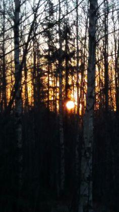 Aamu aurinko