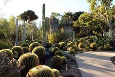 Conheça os diferentes tipos de jardins - Blog Buchel Store
