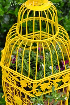 Turn a Bird Cage  into a planter with spray paint. Tutorial at www.whatsurhomestory.com
