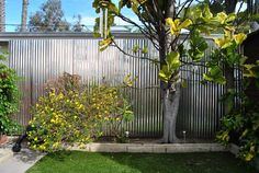 Corrugated steel privacy fence for an industrial feel.