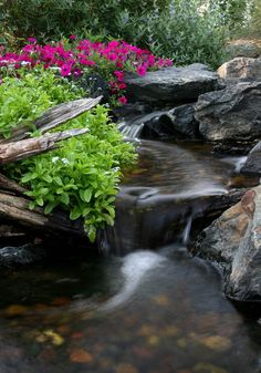 Tips for Designing a Backyard Pond :: Natural Looking Waterfall