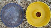 Κίτρινες οικολογικές παγίδες για βλαβερά έντομα