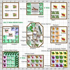Gardening Herb Garden Plan - Square Foot Garden Plan-Full Sun - SQF garden of raised beds with grass pathways between boxes to be actually wide for ease of mowing. Vegetable Garden Planning, Veg Garden, Fruit Garden, Garden Care, Edible Garden, Vegetable Gardening, Garden Grass, Small Vegetable Gardens, Veggie Gardens