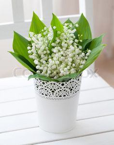 lily of the valley table - Google otsing