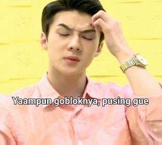 Memes Funny Faces, Funny Kpop Memes, Exo Memes, Cute Memes, Stupid Memes, Shinee, Monsta X, Exo Stickers, Got7