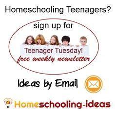 Better Homeschool for a Teenager? ?