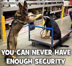 GSD Security!